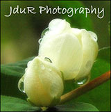 JduR Photography