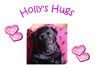 Holly's Hugs