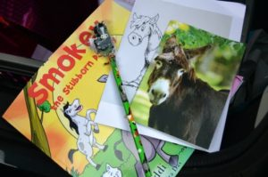 Donkey Sanctuary - Goody bag contents